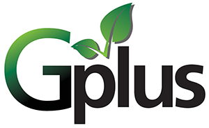The Green Plus Logo