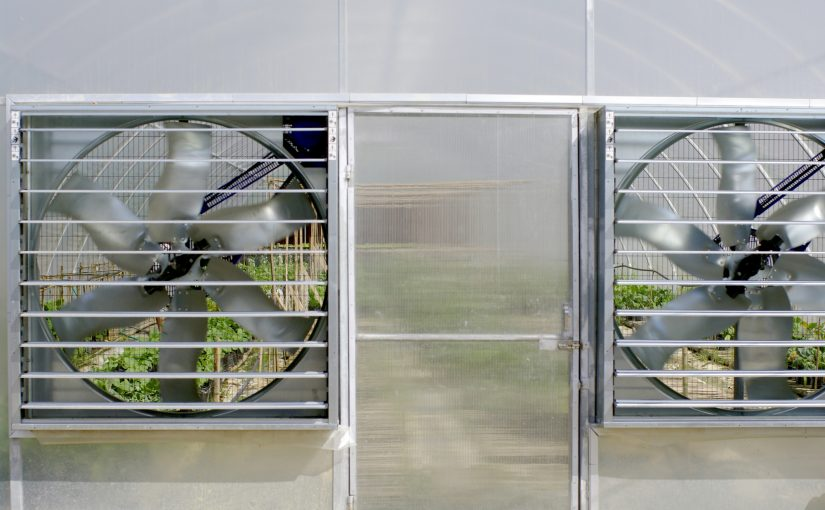 Why Is it Important that a Greenhouse have an Exhaust Fan?